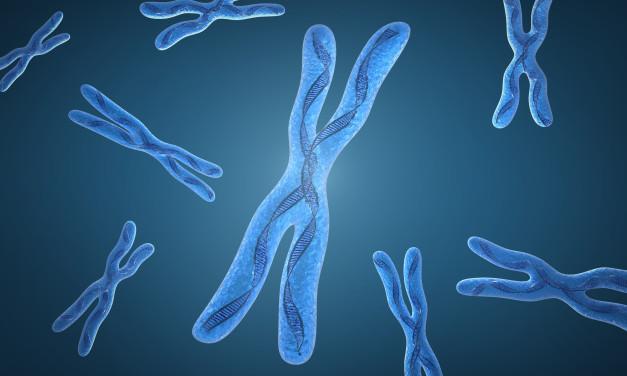 Video: Mutations