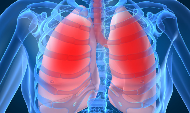 How do we breathe? (Lungs and Pleura)