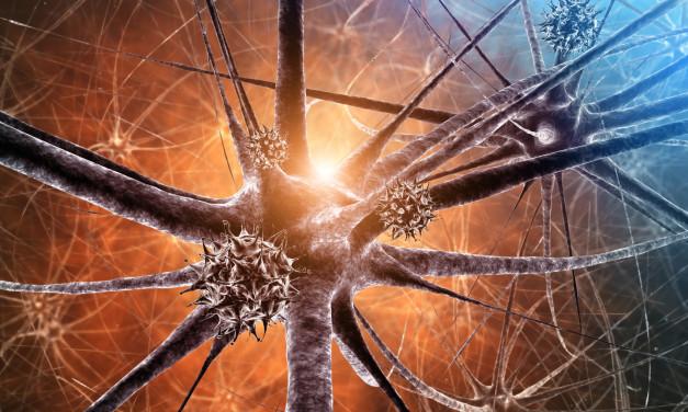 What is Encephalitis?