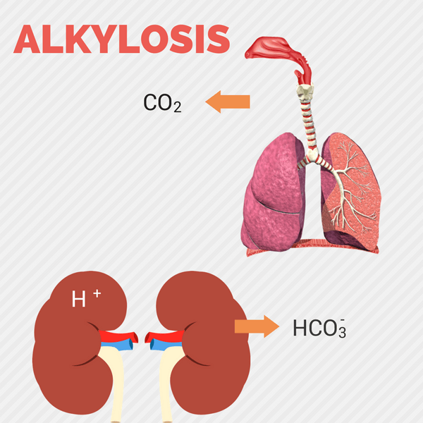 Alkylosis