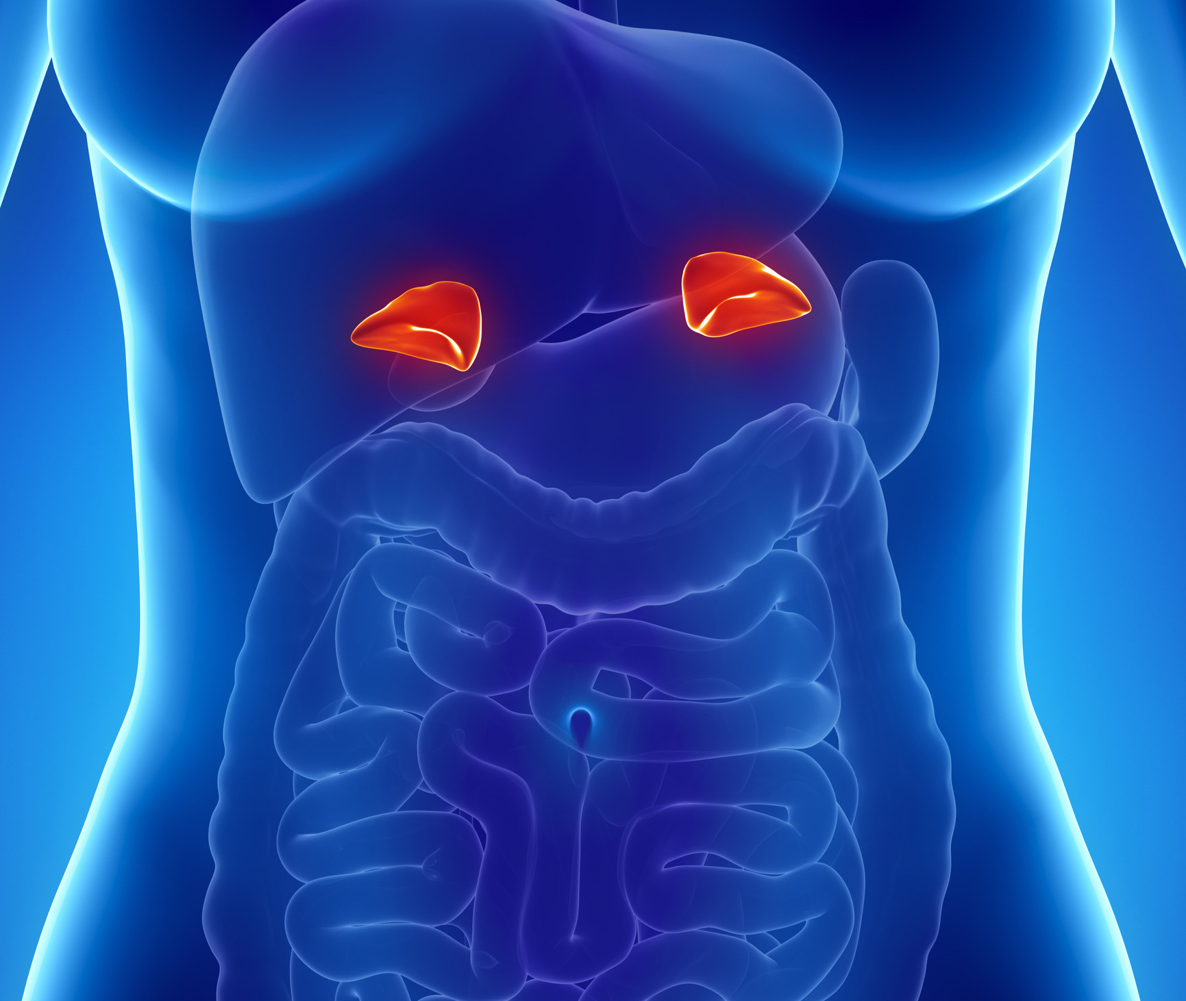 Adrenal Gland: 5 Ways To Boost Your Adrenal Health
