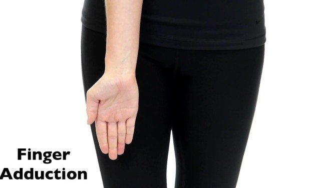 Finger Adduction