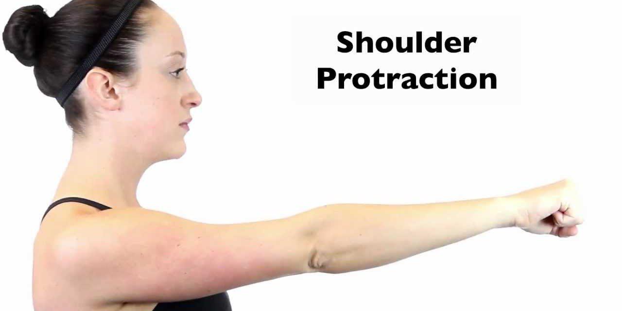 Shoulder Protraction